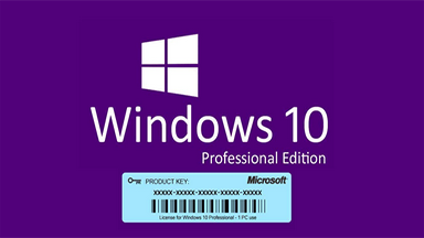 Why all of us like using Windows 10 pro oem keys?