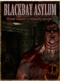 BLACKBAY ASYLUM Steam CD Key