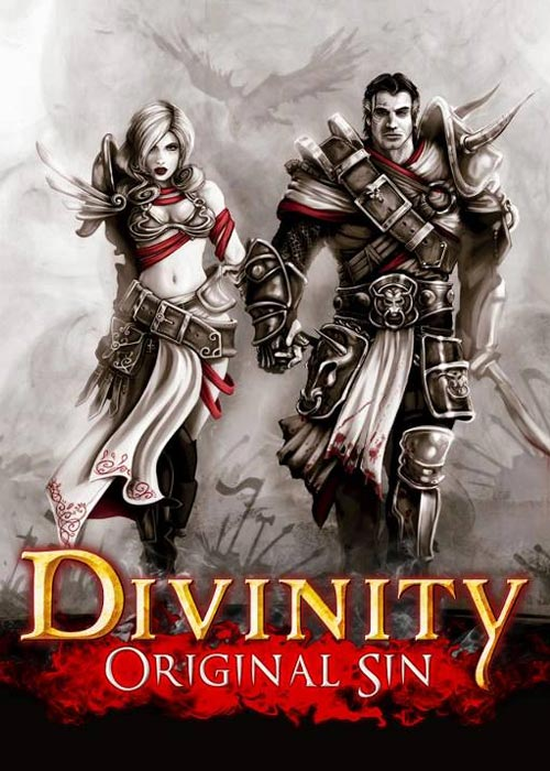 Divinity Original Sin Steam CD Key